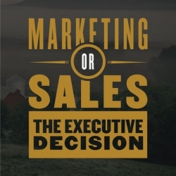 Marketing or Sales The Executive Decision