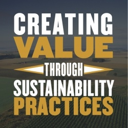 Creating value through sustainability practices