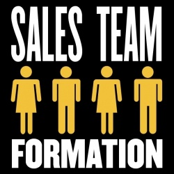 Sales Team Formation