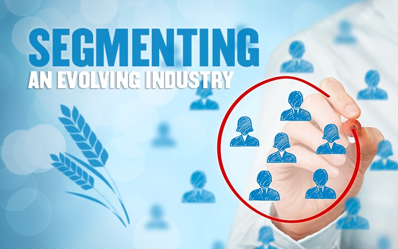 Segmenting an Evolving Industry