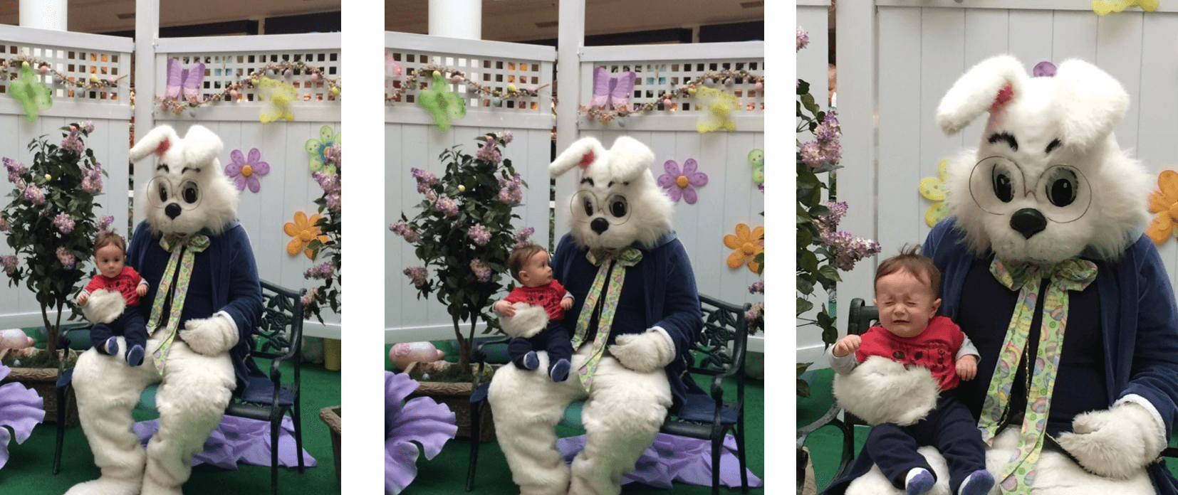 image series showing child being held by a person in an Easter bunny costume and reassessing the situation