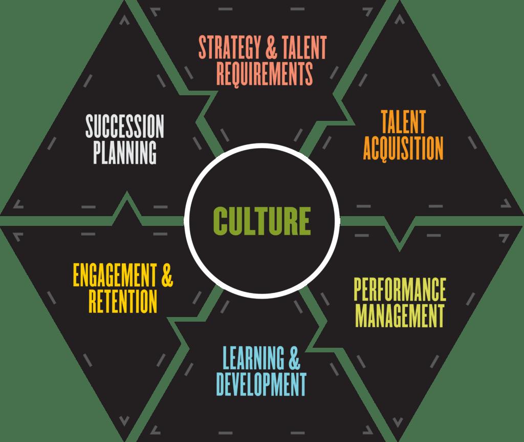 talent management themes